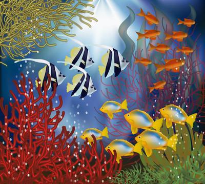 水下壁纸与热带鱼,矢量图
