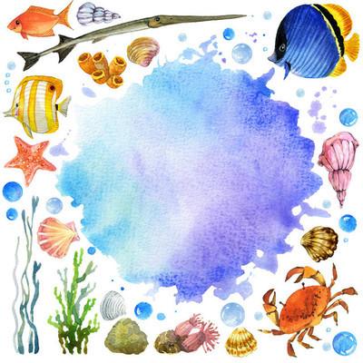 水彩的海底世界的动物