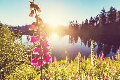风景名胜图片湖