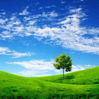 自然风景与云