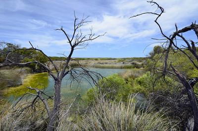 澳大利亚, 西澳大利亚, 自然