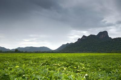 在阴天,大山在泰国考吉安莱城