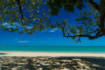 考拉热带海滩