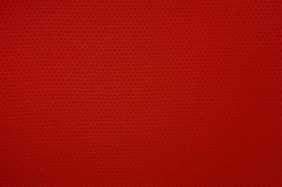 红色体育网衣服