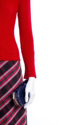红色毛衣, 裙子和钱包