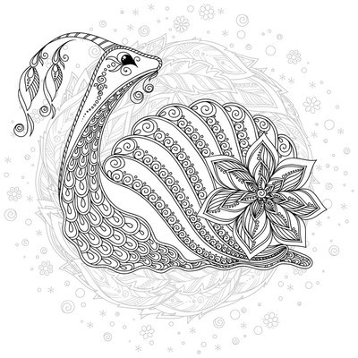一只蜗牛的插图