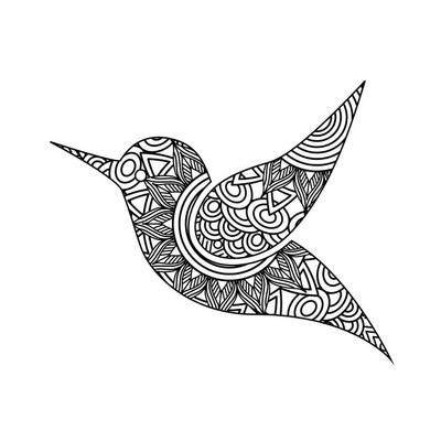 鸟类成人着色页绘图 zentangle