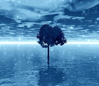 蓝色图片。棵孤独的树