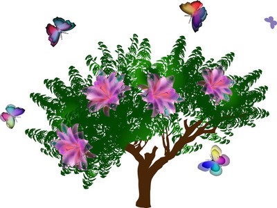 花朵与蝴蝶树