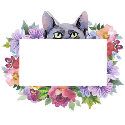 以水彩风格猫野生动物架