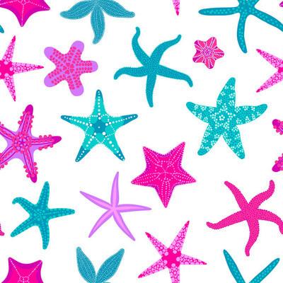 海星无缝图案。海洋和航海背景与海星。海星水下无脊椎动物动物。矢量插图