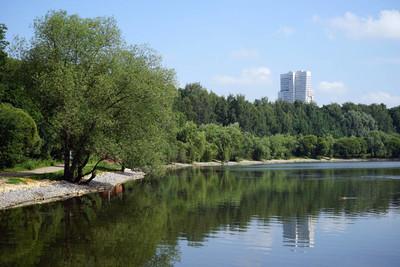 在公园的湖