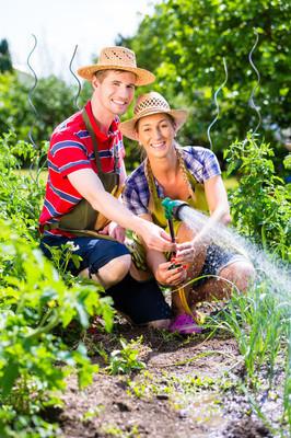 夫妇与花园浇水软管