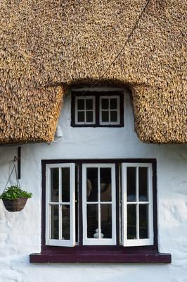 爱尔兰的茅草的小屋窗户关