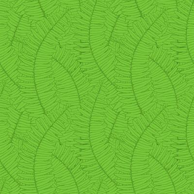 蕨类植物的叶子无缝背景