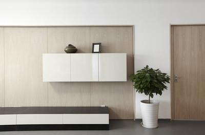 优雅、 舒适家居室内,电视墙