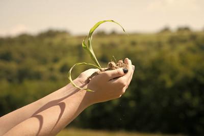 生态学概念, 环境保护