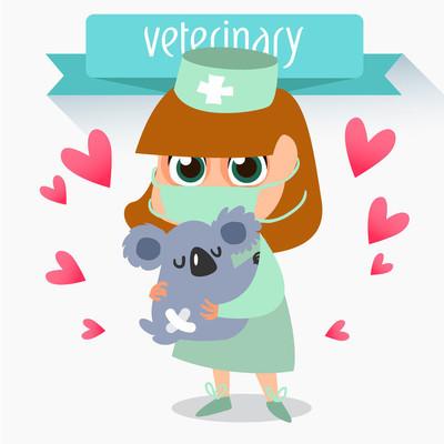 专业兽医。考拉的治疗