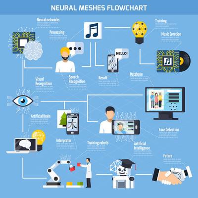 神经网格流程图