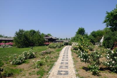 世界月季主题园①