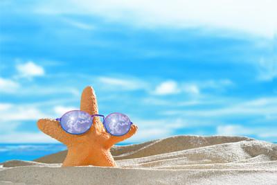 在沙滩上的海星