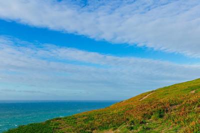 丘陵海岸, 绿色的草地和美丽的海景色