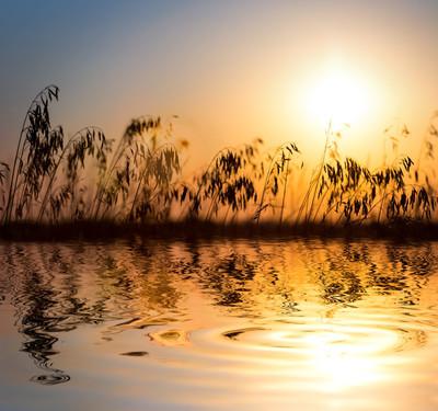日落,河景色