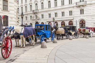 奥地利维也纳。维也纳忽等候游客在霍夫堡宫