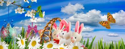 美丽的节日复活节贺卡