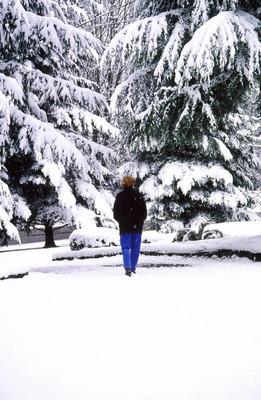 冬天的雪在户外
