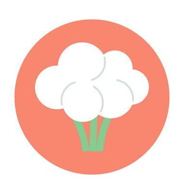 花椰菜彩色矢量图标