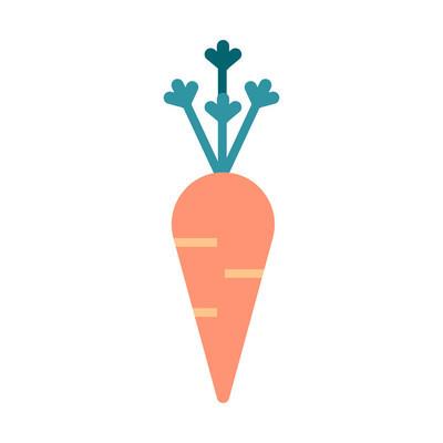 胡萝卜矢量图