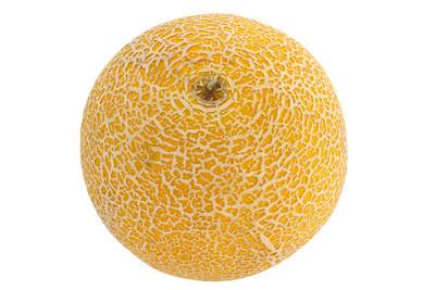在白色背景上的黄色瓜