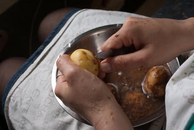 马铃薯  青皮