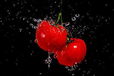 食品西红柿的照片