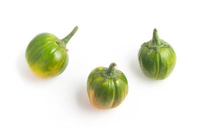 非洲的茄子。巴西吉洛