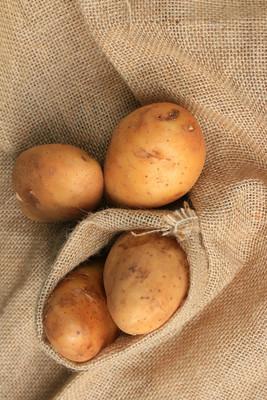 新鲜马铃薯
