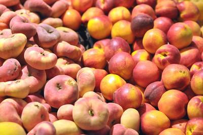 地中海的夏日水果