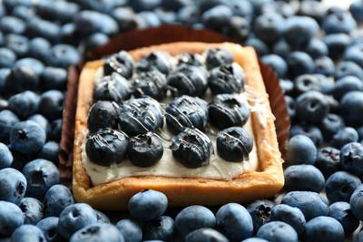 Gourmet fresh blueberry tart