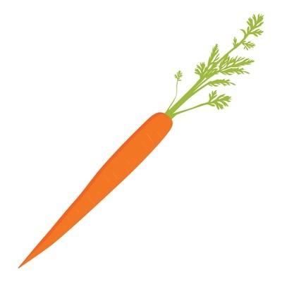 胡萝卜图标光栅