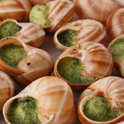 bourgogno 蜗牛