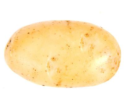 马铃薯在白色背景上