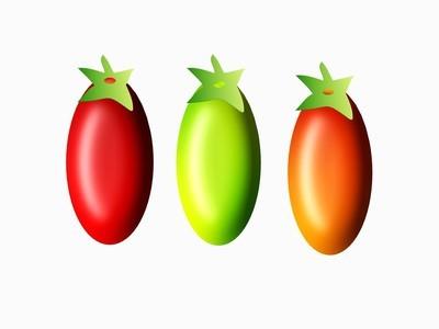 西红柿的插图