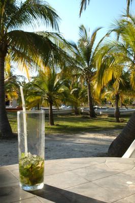 鸡尾酒 ai caraibi