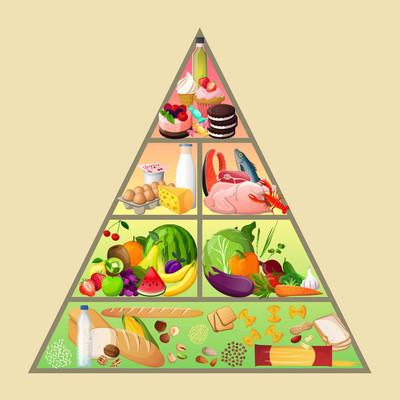 食物金字塔概念