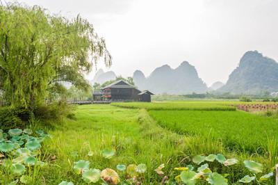 美丽的风景名胜区的公园 Shiwai 桃园,桂林,中国