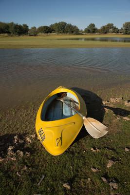 皮划艇的水