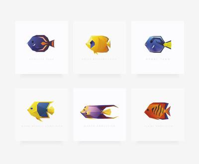六热带鱼一套
