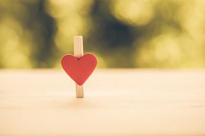 关于爱与自然的关系的纸夹的心