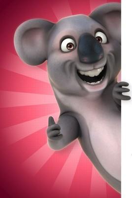 Funny grey  koala